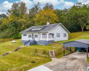 736 Sand Valley Rd, Oneonta image