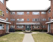 1142 West North Shore Avenue Unit 3N, Chicago image