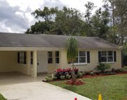235 Angeles Road, Debary image
