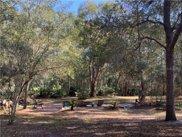 1255 Black Bear Ranch Trail, Pierson image