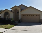 16022 Hawk Hill Street, Clermont image