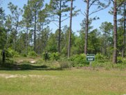 Lot 1066 Duany Dr., Georgetown image
