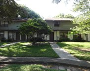 3418 Oak Trail Court, Tampa image