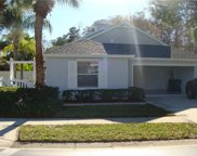 1225 Silverstrand Dr, Naples image