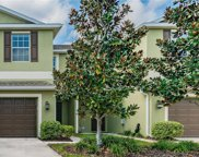 20212 Water Hickory Place, Tampa image