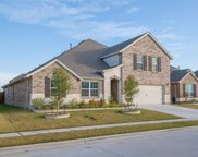 816 Basket Willow Terrace, Fort Worth image