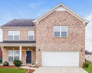 4059 Locerbie Cir, Spring Hill image