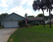 1314 Queen Palm Drive, Edgewater image
