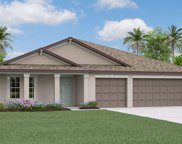 10852 Sage Canyon Drive, Riverview image