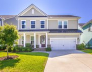 2223 Spring Hope Drive, Mount Pleasant image