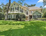 175 GOVERNORS RD, Ponte Vedra Beach image