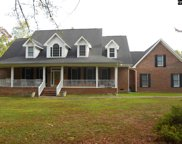 1105 Canterfield Road, Chapin image