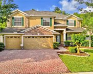 17354 Emerald Chase Drive, Tampa image