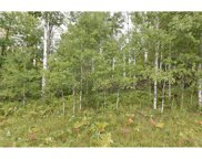 TBD 390th Ave, Aitkin image