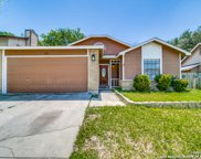 13814 Fairway Hedge, San Antonio image