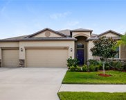 11617 Brighton Knoll Loop, Riverview image