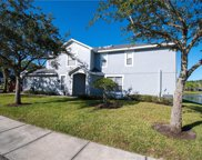 10301 Willow Leaf Trail, Tampa image