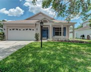 11215 Blue Sage Place, Lakewood Ranch image