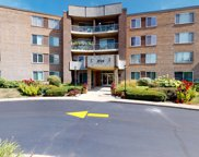 900 East Wilmette Road Unit 207, Palatine image