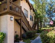 83     Timbre, Rancho Santa Margarita image