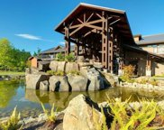 1175 Resort  Dr Unit #SA1-224, Parksville image