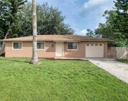 9041 Pineapple  Road, Fort Myers image