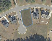 1008 Whimbrel Ct., Conway image