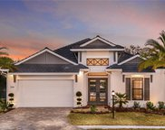 12106 Bald Cypress Cove, Parrish image