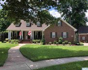 203 White Picket Trail, Meridianville image