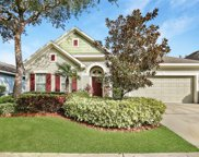 15814 Starling Water Drive, Lithia image