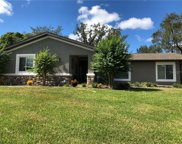 11231 Murraysville Drive, Spring Hill image