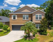 14262 Blue Dasher Drive, Riverview image