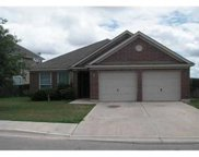 298 Fall Dr, Kyle image