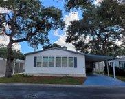 135 Oakwood Lane, Sarasota image
