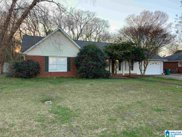 10440 Shadowview Road, Tuscaloosa image