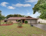 1973 Greenview Drive, Deltona image