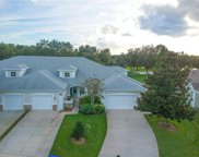 3240 River Branch Circle, Kissimmee image