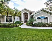 2026 Merlin Ct, Naples image