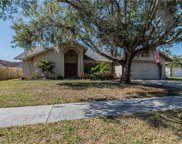 13011 Sea Pines Way, Riverview image