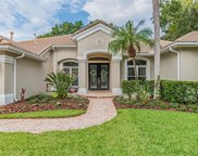 9814 Emerald Links Drive, Tampa image