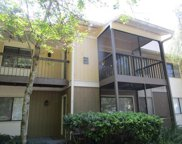 13405 Arbor Pointe Circle Unit 201, Tampa image