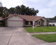 1515 Midnight Pass Way, Clearwater image