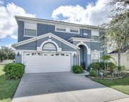 11621 Addison Chase Drive, Riverview image