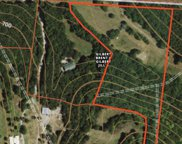 9775 Split Log Rd, Brentwood image