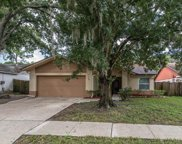 4605 S Country Hills Court, Plant City image
