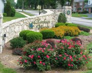 15992 Woodlet Way  Court, Chesterfield image