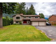 21224 Mountview Crescent, Hope image