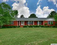 2944 Ready Section Road, Toney image