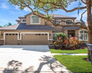 15207 Merlinpark Place, Lithia image