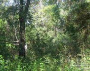1621 Arena Rd, Cantonment image